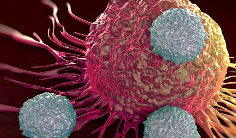La donante de 6 órganos que ha transmitido el cáncer y la muerte a 3 receptores
