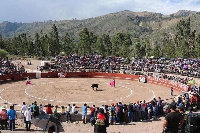 Ayacucho: proponen ordenanza para prohibir corrida de toros